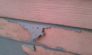 Paint Peeling Off Of Fiber Cement Siding