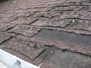 old roofing shingles that need to be replaced